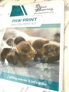 Paw Print Kit for taking pet paw prints and making pet paw print jewellery